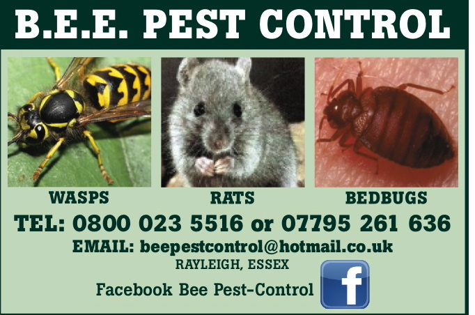 Pest control Rayleigh Essex