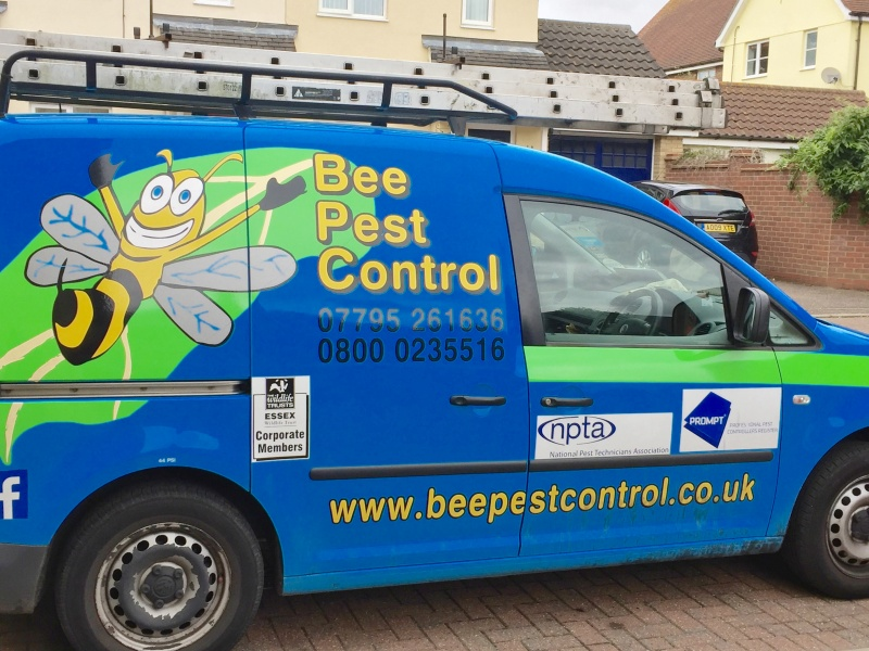 Bee Pest Control Essex